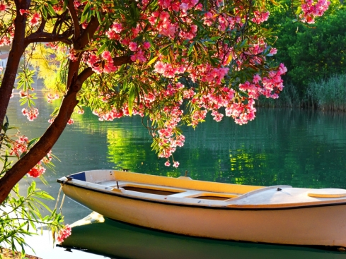 A-boat-in-calm-lake-flowerdrop-31573417-1024-768